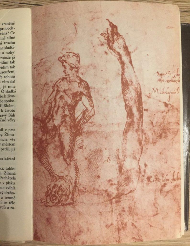 Štúdia k soche Dávida, ilustrácia z knihy Kámen a bolest.
